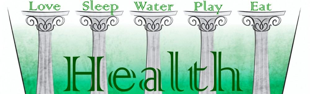 The Five Pillars of Health